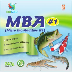 MBA-FS-with-B-N-logo1-300x300.jpg